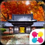 京の秋2 for[+]HOMEきせかえテーマ