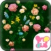 Classy Theme-Roses in Bloom-