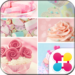 Cute Theme-Melty Sweets-