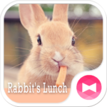Cute Theme-Rabbit's Lunch-