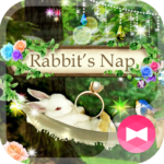 Cute Theme Rabbit's Nap