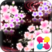 Cute Theme-Starry Sakura-