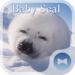 Cute Wallpaper Baby Seal Theme