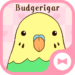 Cute Wallpaper Budgerigar Theme