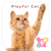 Cute wallpaper-Playful Cat-