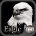 Eagle Wallpaper&icon