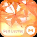 Fall Leaves Autumn Theme