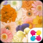 Flower Wallpaper Happiness