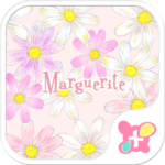 Flower wallpaper-Marguerite-