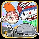 Funny Aquarium