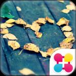 Heart Theme-Fallen in Love-