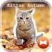 Kitten Autumn CatTheme