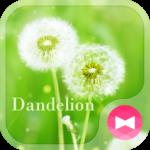 Lovely Wallpaper Dandelion