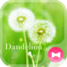 Lovely Wallpaper Dandelion