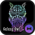 Owl Wallpaper Galaxy