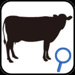この牛どこの牛?