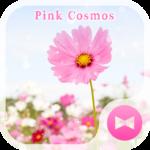Pink Cosmos  Flower Theme