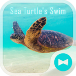 Sea Turtle's Swim +HOME Theme
