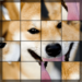 Swapping Dog Puzzle
