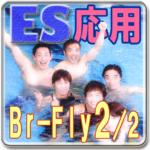 Swimming Self Lesson adv BrBu2
