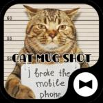 Wallpaper Cat Mug Shot Theme