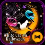 White Cat on Halloween Theme