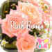 icon & wallpaper-Pink Roses-