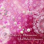 Cherry blossom  wallpaper free