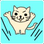 Jump! Cat! Cat Dream