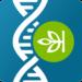 AncestryDNA – Genetic Testing