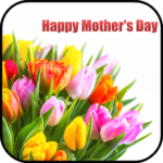 Mother's Day Flower Cards