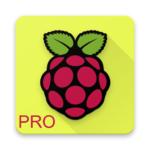 Raspberry Pi PRO