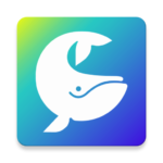 SAY – Share & chat via video with your close ones